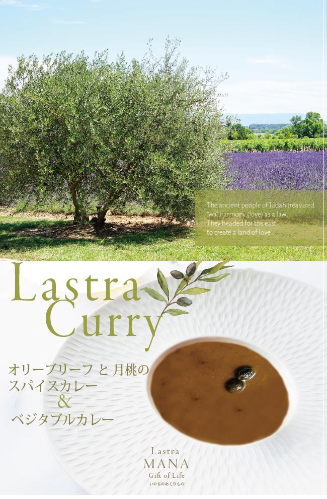 月桃とオリーブの葉のラストラカレー
