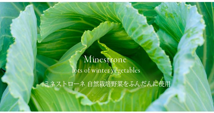 野菜それぞれに野菜の素晴らしい働きがあります